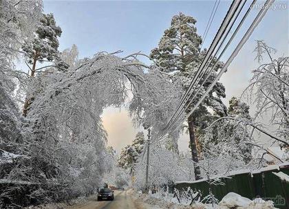 Из-за налипания мокрого снега частично обесточены населенные пункты в пяти районах Закарпатья